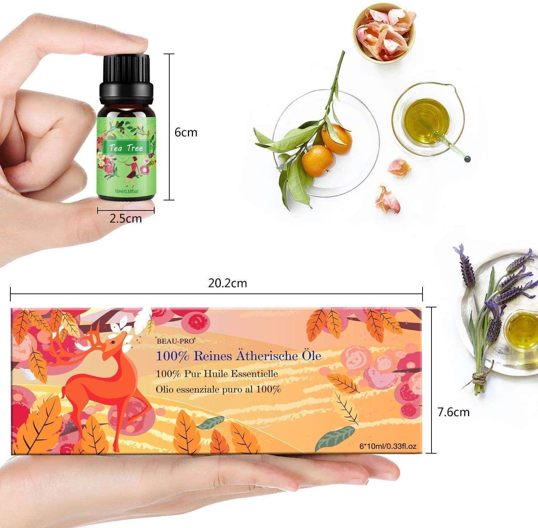 Aceites esenciales en Set- Aromaterapia, aceite aromático. tamaño